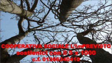 SOSTIENICI CON IL 5 x 1000    C.F. 01366340410